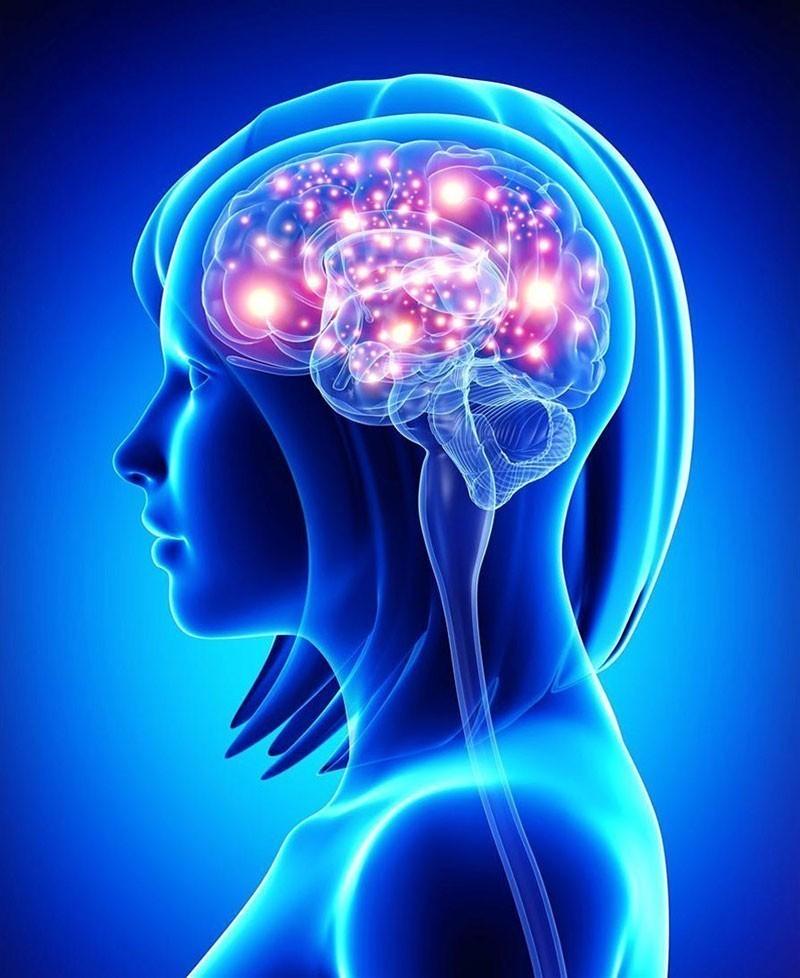 Полный спектр МРТ-исследований в Химках
