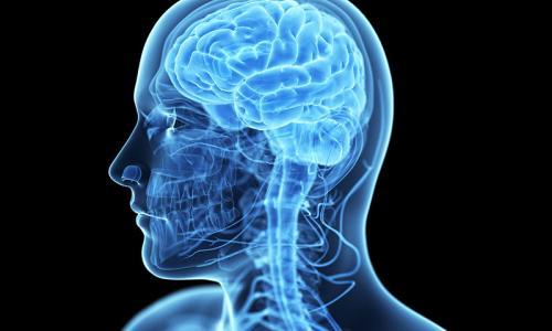 МРТ с контрастированием головного мозга от 6 500 рублей