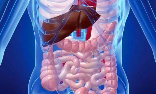 МРТ всех органов в Строгино