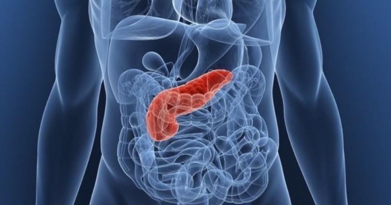 МРТ диагностика поджелудочной железы