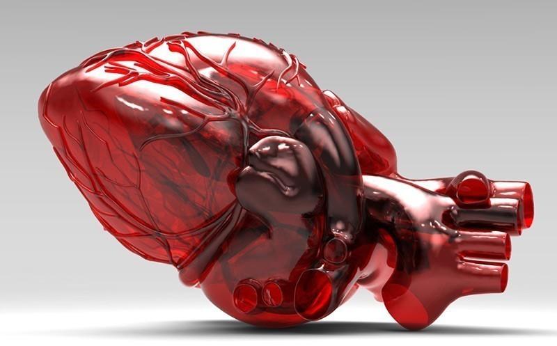 Гипертрофия миокарда сердца — особенности заболевания