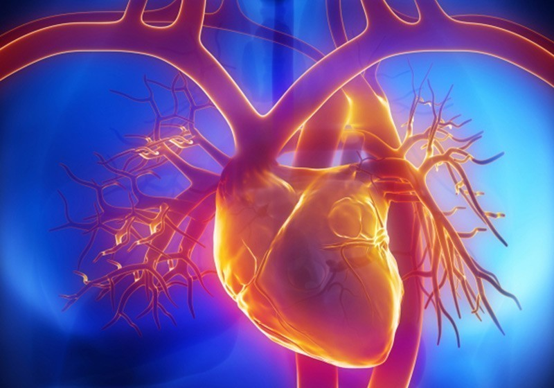 Коарктация аорты — описание заболевания, симптомы, лечение