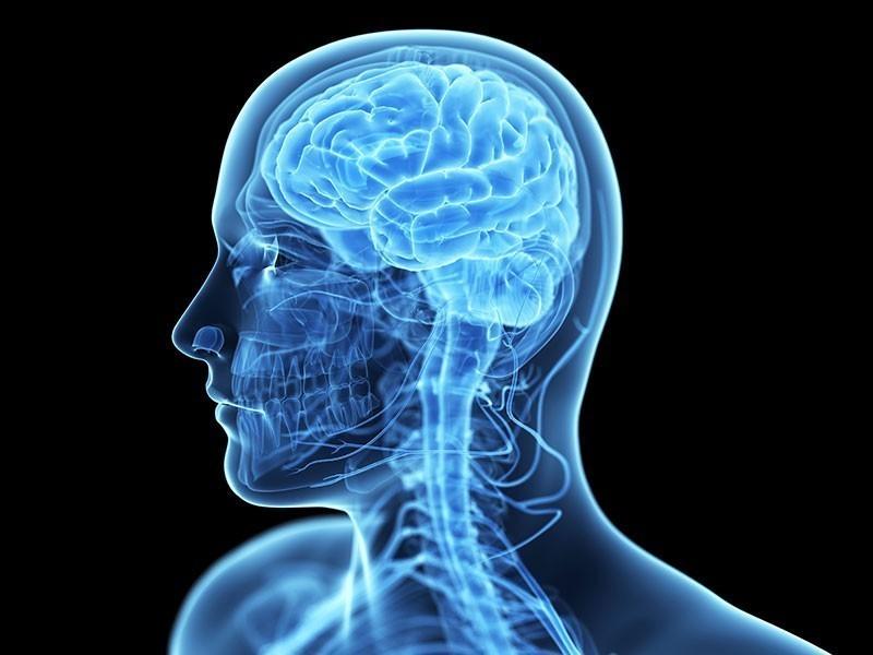 Не знаете, где можно сделать МРТ головы? Приходите к нам