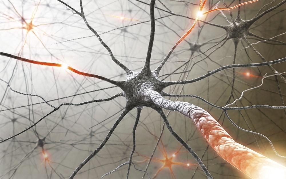Рассеянный склероз: симптомы, причины, диагностика, лечение и профилактика