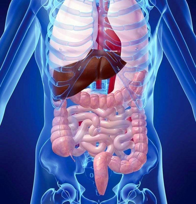 Задачи и цели МРТ органов в Строгино