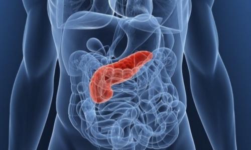 МРТ диагностика поджелудочной железы за 4 500 рублей