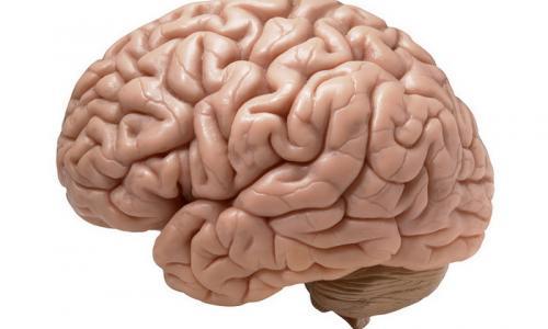 Пройдите МРТ головного мозга у нас: Москва, Волоколамское шоссе, д.95