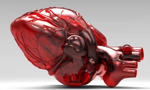 Гипертрофия миокарда сердца: признаки заболевания и его лечение