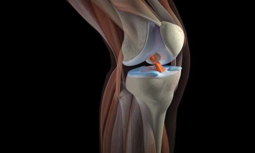 Профессиональное МРТ коленного сустава от 4 500 рублей