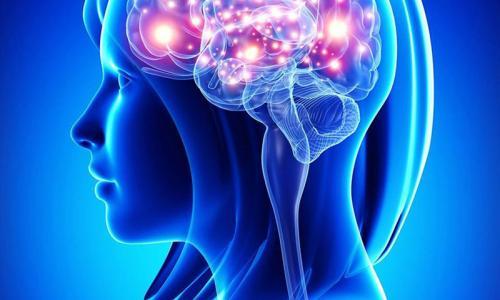 МРТ в Химках любой системы организма