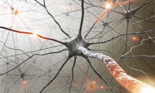 Симтомы, диагностика и лечение рассеянного склероза