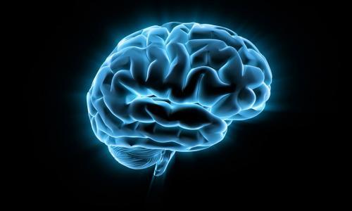 Стоимость МРТ головного мозга в Москве от 3 700 руб